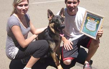 What it means to be a Dog Trainer