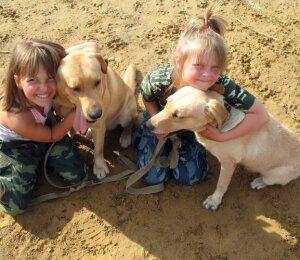 Service Dog (Dog Assistant)
