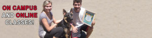 Become a Dog Training - On Campus and Online Courses