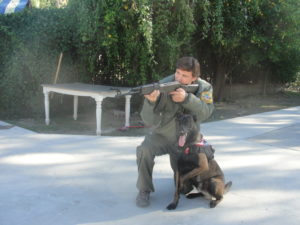 Dog Training - K9 course