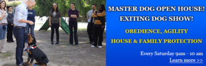 Dog Training Show - Open House at Master Dog Training