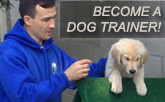 Become a Dog Trainer
