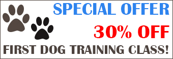 Dog Training Class - 30% Off