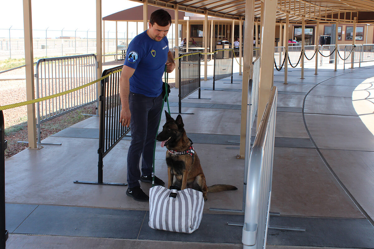 Drug detection dogs - Education and School Services