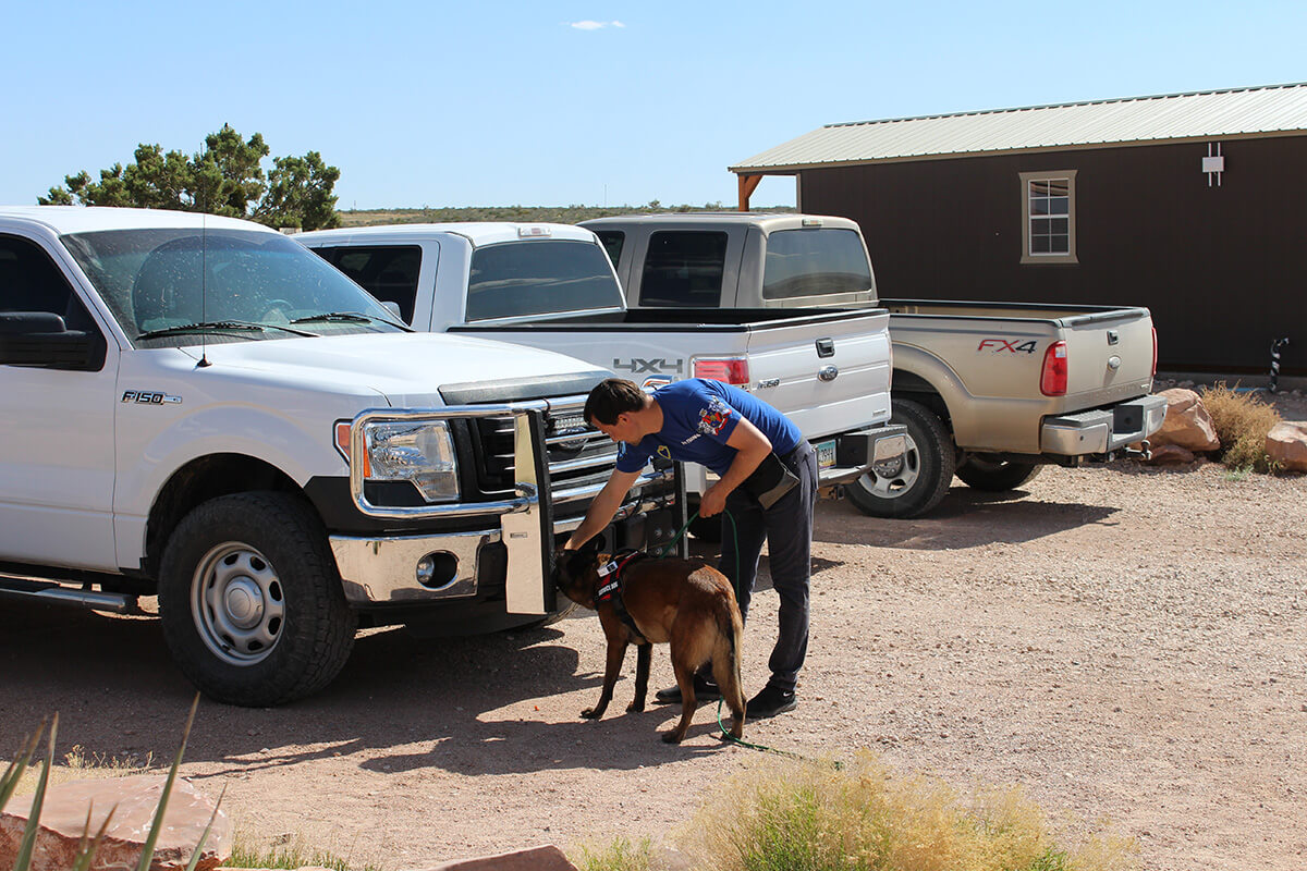 Drug detection dogs - Private Homes