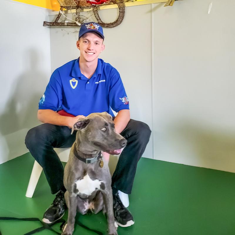 Royal Dog academy trainer